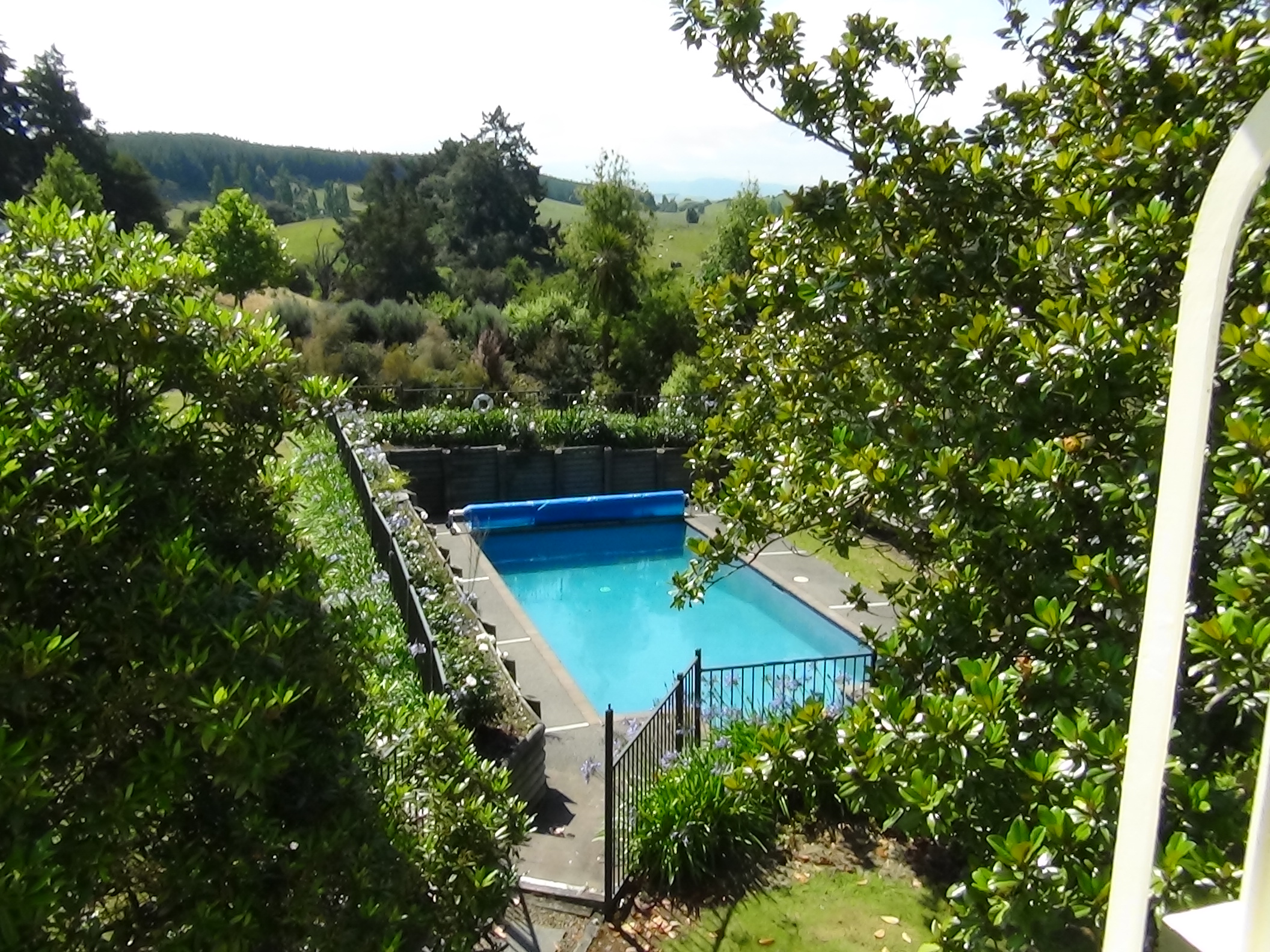 Beautiful refreshing salt water swimming pool