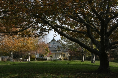 Waiwhenua Homestead Autumn
