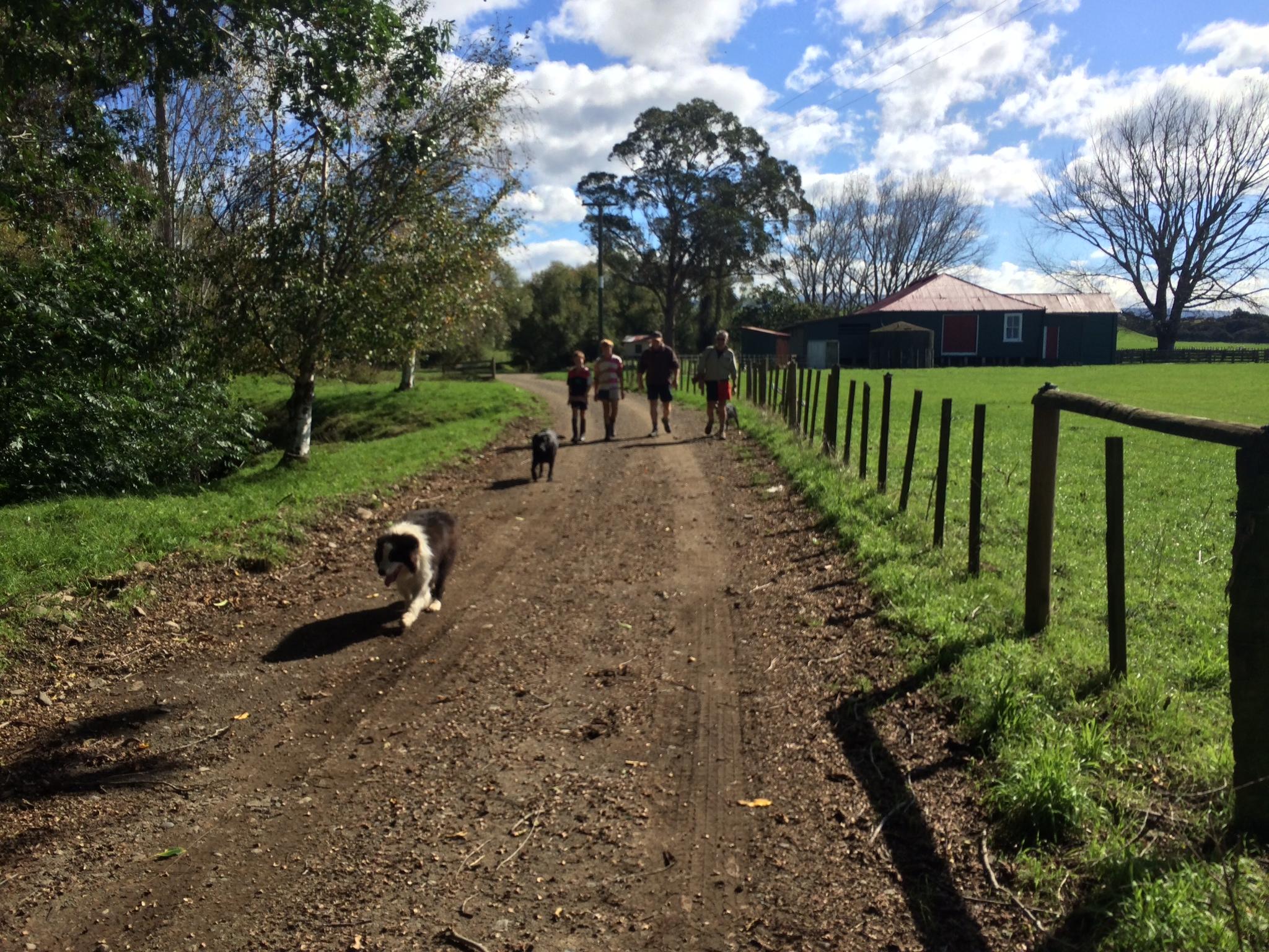 Farm walks