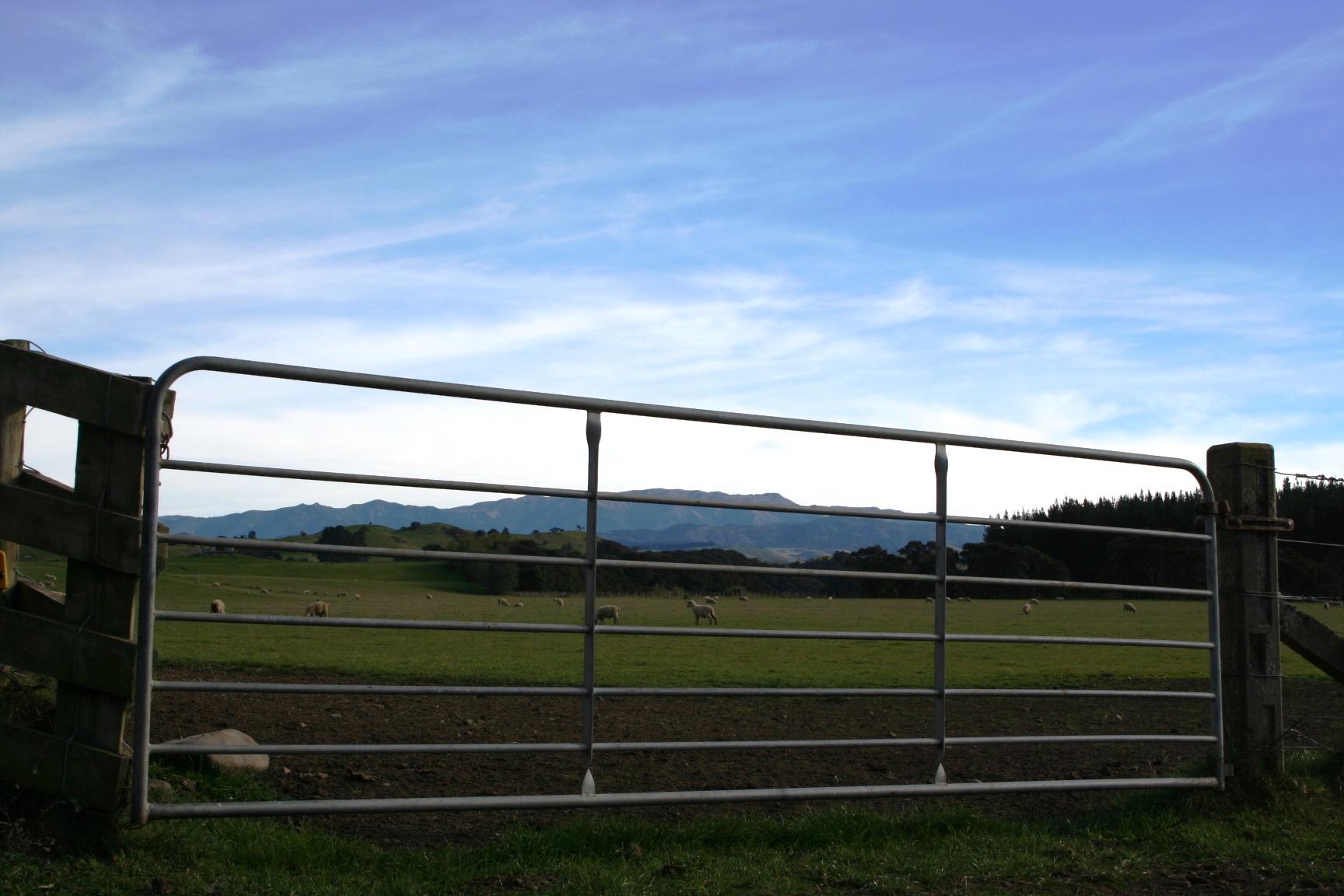 Gate to mountains