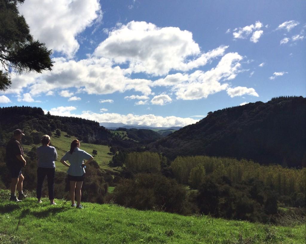 NZ Farmstay scenary - River Valley View